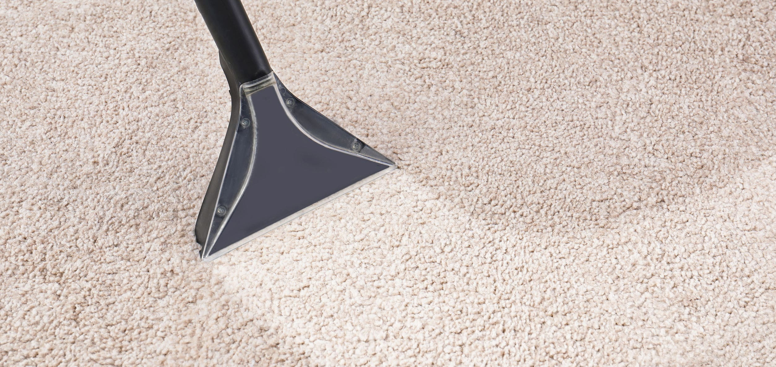 Closeup of carpet cleaner removing moisture from carpet