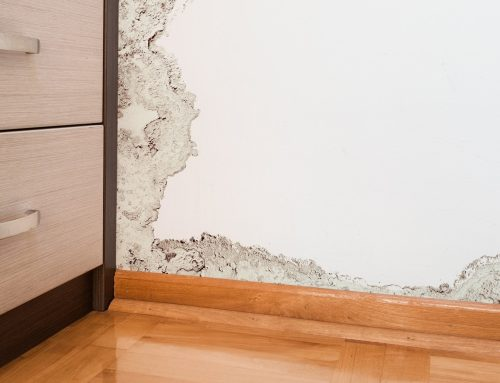 Emergency Restoration and Cleanup Services – When Should I Call A Professional?